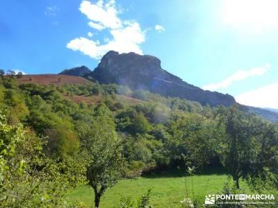 Hayedos Parque Natural de Redes;vacaciones singles madrid excursiones por la pedriza guias de sender